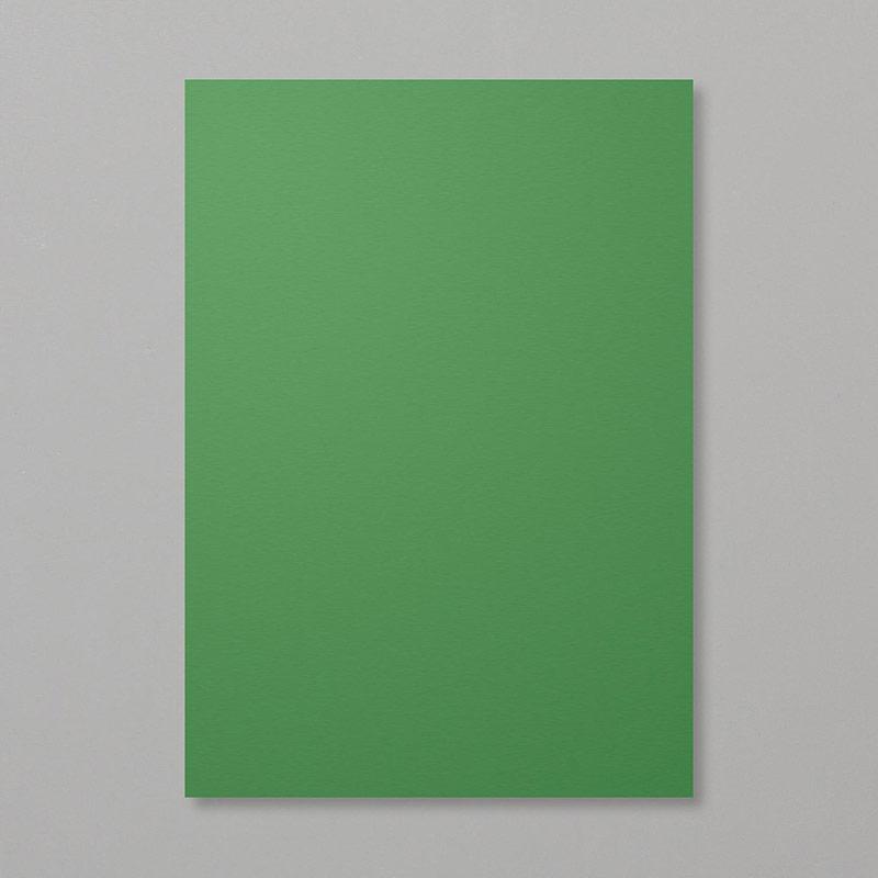 108605 - Regals Collection Garden Green Cardstock