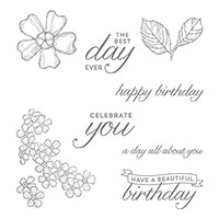 Birthday Blossoms Clear-Mount Stamp Set
