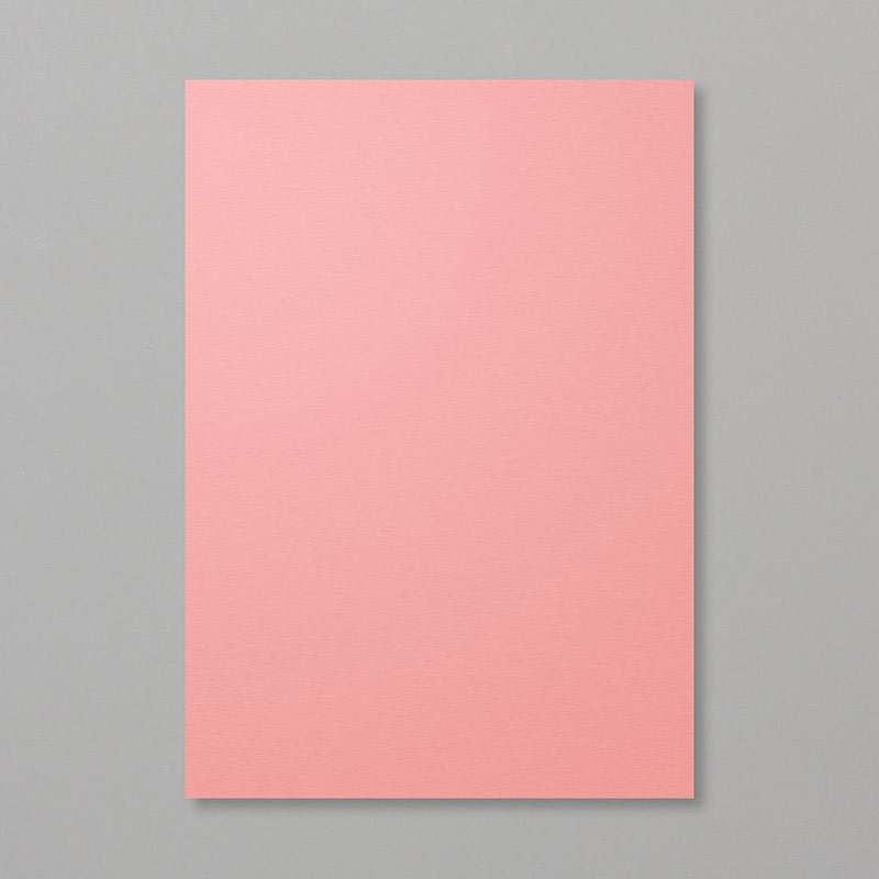 Flirty Flamingo A4 Cardstock