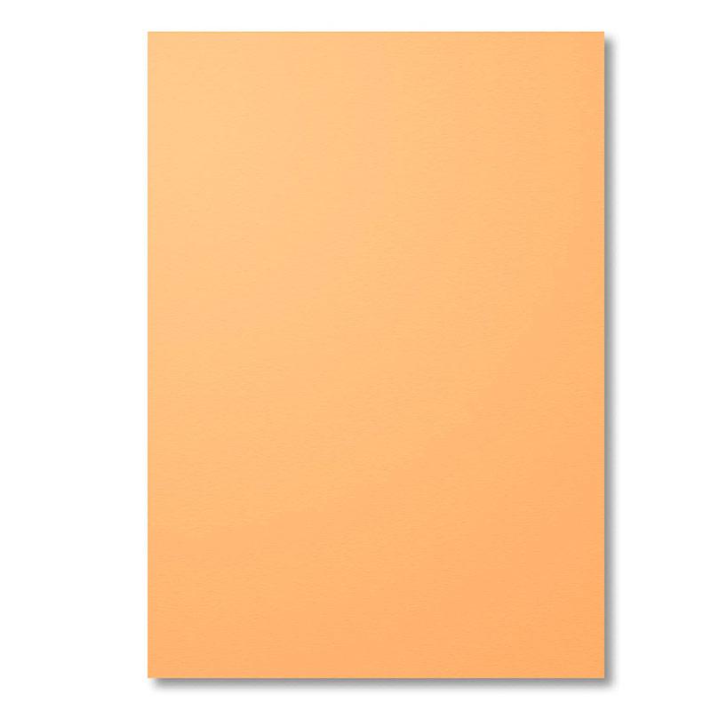 141422 - 2016-2018 In Color Peekaboo Peach Cardstock