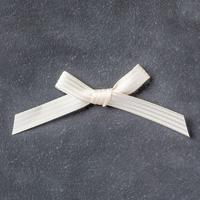Very Vanilla 3/8 (1 cm) Stitched Satin Ribbon