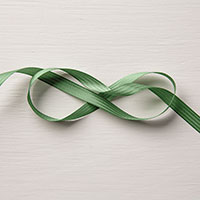 Garden Green 3/8 Stitched Satin Ribbon