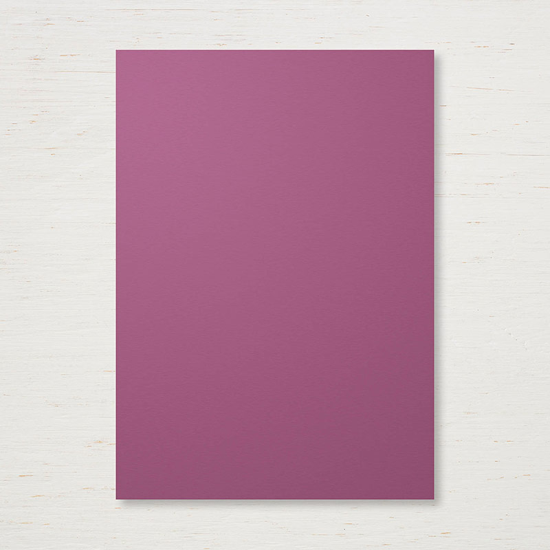 144248 - 2017-2019 In Color Fresh Fig Cardstock