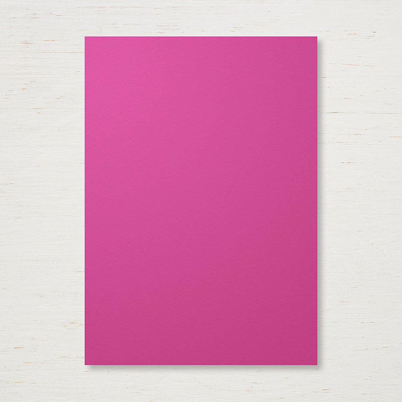 144249 - 2017-2019 In Color Berry Burst Cardstock
