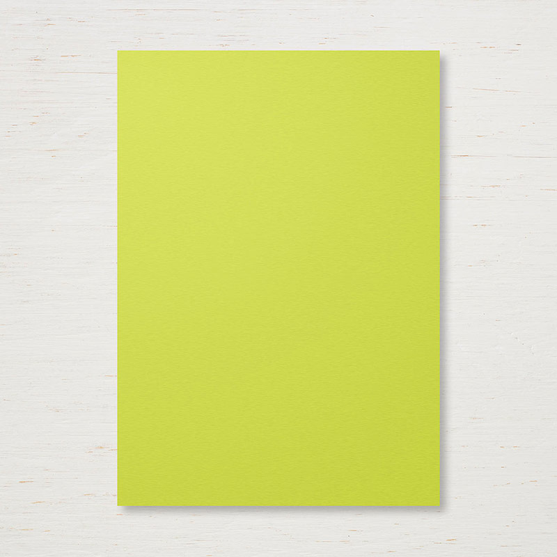 144250 - 2017-2019 In Color Lemon Lime Twist Cardstock