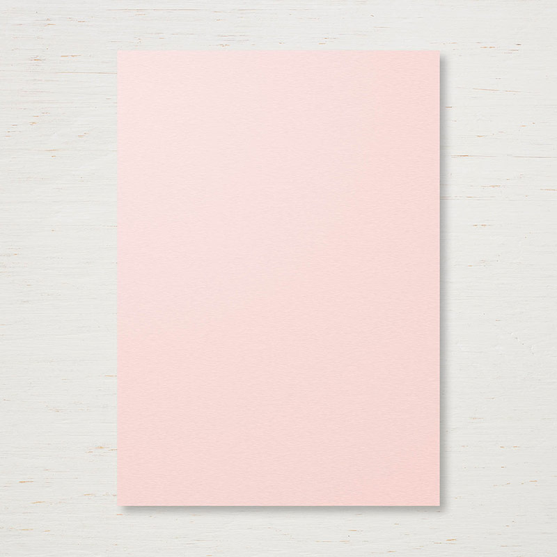 144251 - 2017-2019 In Color Powder Pink Cardstock