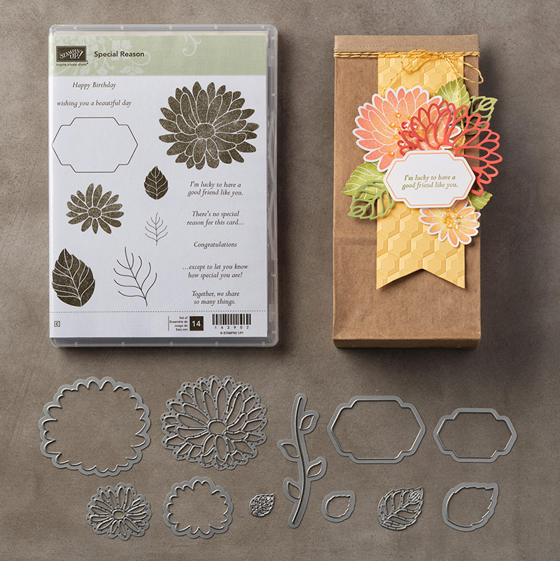 Special Reason Bundle - Retiring Framelits - Leonie Schroder Independent Stampin' Up! Demonstrator Australia